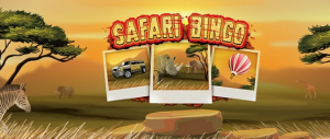 Win A 6 Night Trip To Africa With Safari Bingo